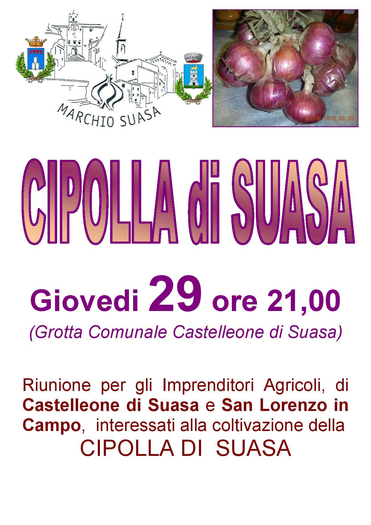 Invito-ad-incontro-per-CIPOLLA-DI-SUASA_29SET16_Locandina-page-001