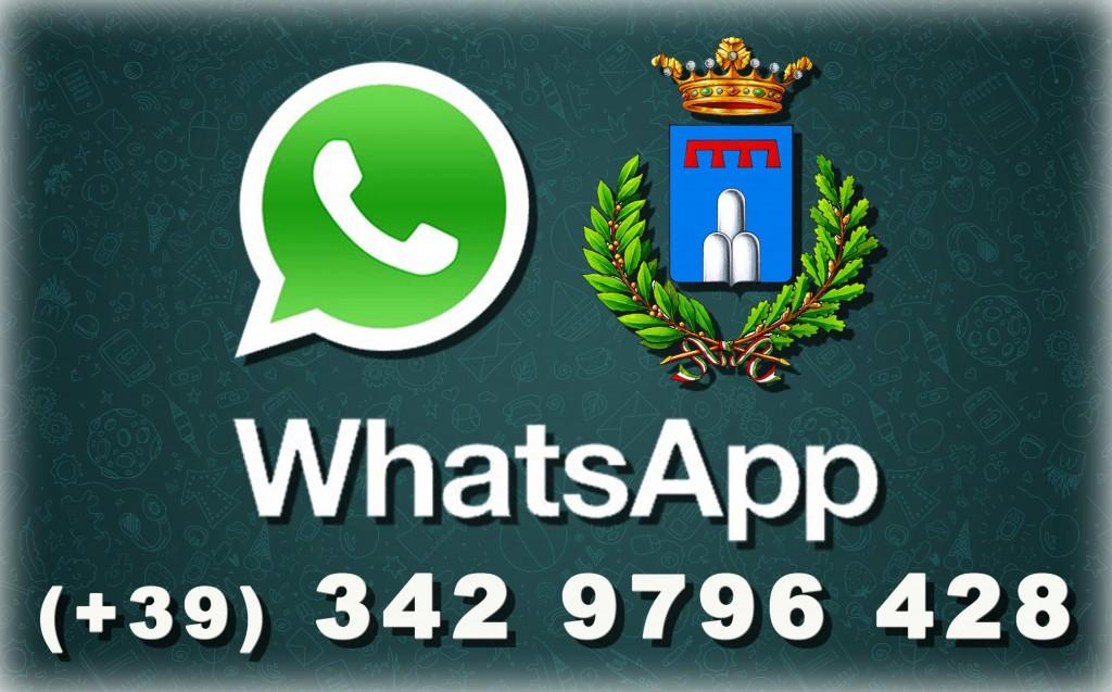 Logo WhasApp Comunale S.Lorenzo in Campo - Versione ridotta